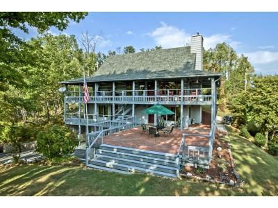 Sevier County Single Family Home For Sale: 725 Vixen Run