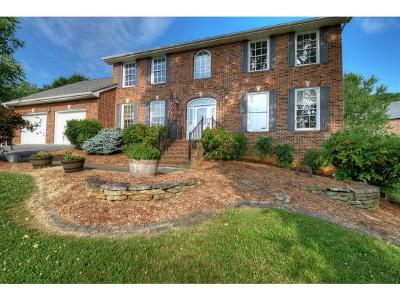 Johnson City Single Family Home For Sale: 3412 Pine Timbers Drive