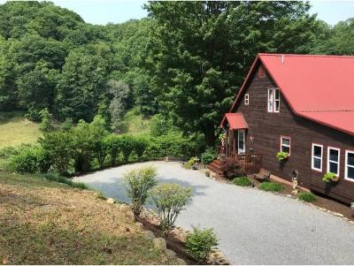 Hampton Single Family Home For Sale: 291 Sally Cove Creek Rd