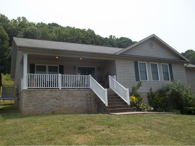 Blountville Single Family Home For Sale: 908 Harr Town Road