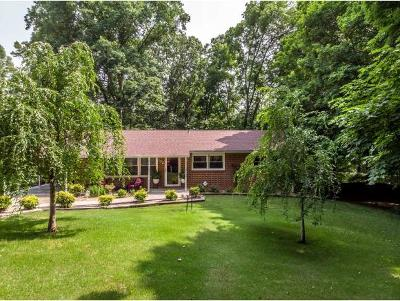 Rogersville Single Family Home For Sale: 132 Rimer Road