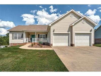 Gray Single Family Home For Sale: 445 Wyndham Drive