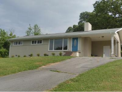 Single Family Home For Sale: 224 Spruce Drive