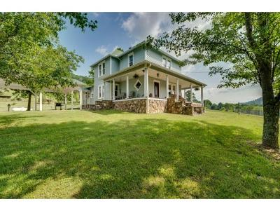 Single Family Home For Sale: 2200 Babbs Mill Rd