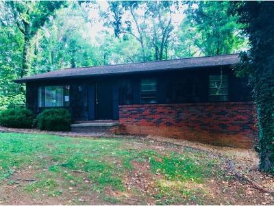 Johnson City Single Family Home For Sale: 126 Tittle Drive