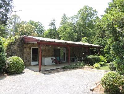 Rogersville Single Family Home For Sale: 1050 Butcher Valley