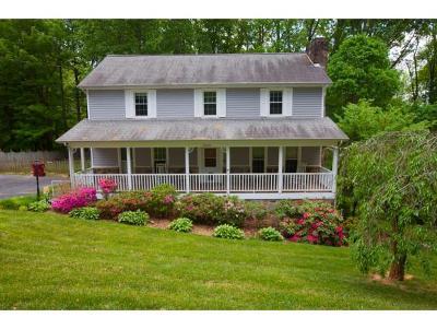 Johnson City Single Family Home For Sale: 2808 Avondale