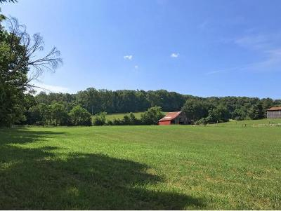 Hamblen County Residential Lots & Land For Sale: 15 & 16 Gentry Road