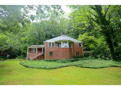 Kingsport Single Family Home For Sale: 4513 Stagecoach Rd