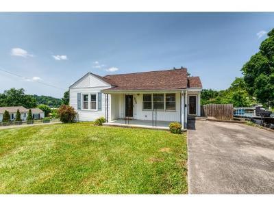 Kingsport Single Family Home For Sale: 225 Bert