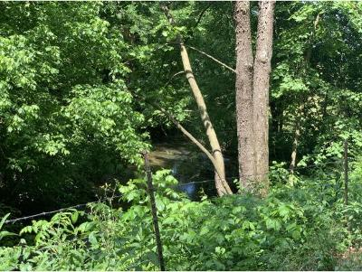 Greene County Residential Lots & Land For Sale: TBD2 Dulaney Road