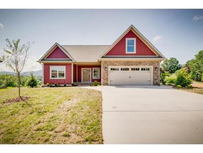 Kingsport Single Family Home For Sale: 3430 Silk Mill Place