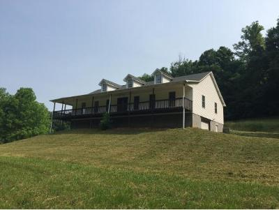 Elizabethton Single Family Home For Sale: 133 Blevins Hollow Rd
