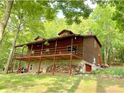 Jonesborough Single Family Home For Sale: 664 Hartmantown Road