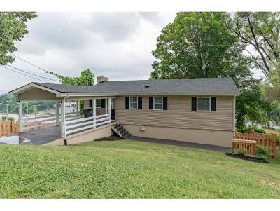 Kingsport Single Family Home For Sale: 542 Bays View Court