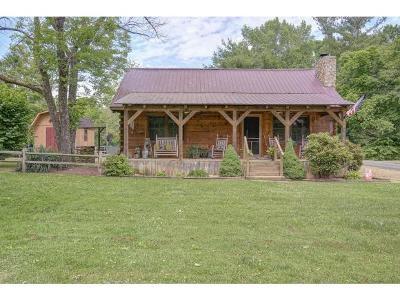 Single Family Home For Sale: 204 Scott Rd