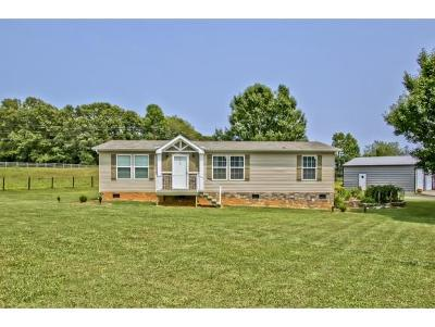 Rogersville Single Family Home For Sale: 261 Austin Mill Rd