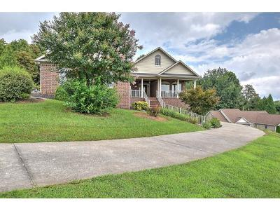 Johnson City Single Family Home For Sale: 420 Mizpah Hills