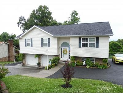 Kingsport Single Family Home For Sale: 945 Afton Street