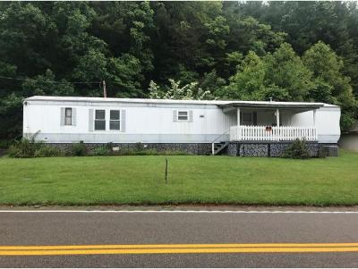 Elizabethton Single Family Home For Sale: 1275 Dry Creek
