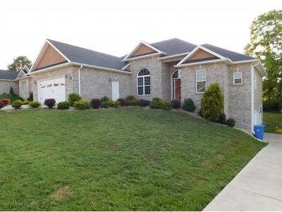 Jonesborough Single Family Home For Sale: 581 Sweetgrass Lane