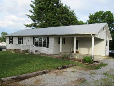 Greeneville Single Family Home For Sale: 95 Cedar Creek Road
