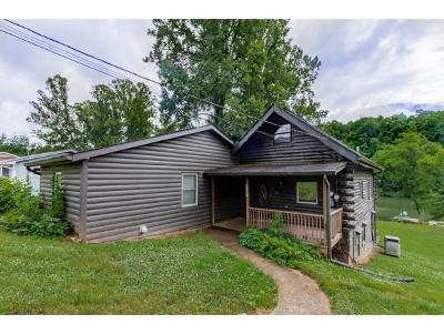 Kingsport Single Family Home For Sale: 577 Pitt Road