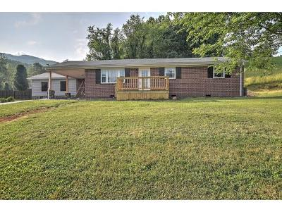 Elizabethton Single Family Home For Sale: 690 Dry Hollow