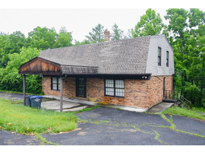 Kingsport Single Family Home For Sale: 145 Rosefield Dr