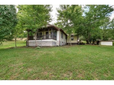 Johnson City Single Family Home For Sale: 1585 Powder Branch Road