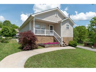 Kingsport Single Family Home For Sale: 3401 Watterson Street