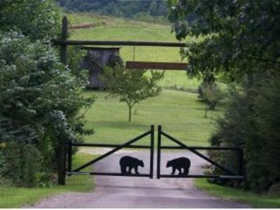 Butler Residential Lots & Land For Sale: 39 Bear Ridge