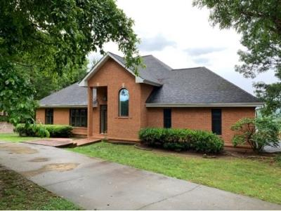 Kingsport Single Family Home For Sale: 1012 Wellington