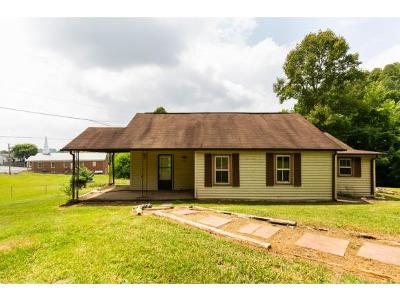 Kingsport Single Family Home For Sale: 919 Independence Drive W