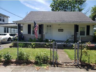 Kingsport Single Family Home For Sale: 217 East Millpond Street