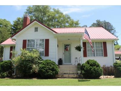 Greeneville Single Family Home For Sale: 8100 W Allens Bridge Rd