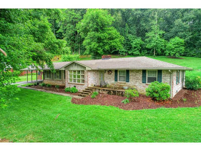 Rogersville Single Family Home For Sale: 307 West Hills Drive