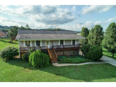 Rogersville Single Family Home For Sale: 1171 McKinney Chapel Road