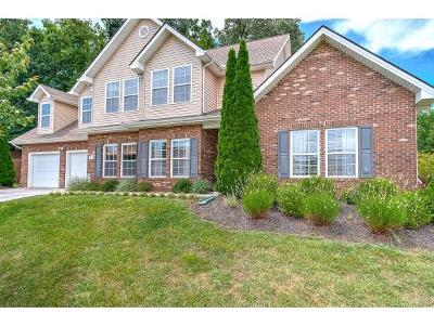 Johnson City Single Family Home For Sale: 28 Springwinds Loop
