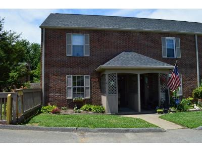 Kingsport TN Condo/Townhouse For Sale: $69,500