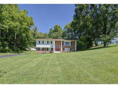 Blountville Single Family Home For Sale: 352 Bell St