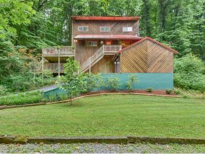 Johnson City TN Single Family Home For Sale: $199,900