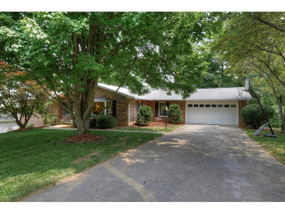 Kingsport Single Family Home For Sale: 1212 Jerry Ln