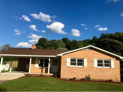 Unicoi Single Family Home For Sale: 3513 Marbleton Road