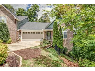 Gray Single Family Home For Sale: 261 Bridgewater Court