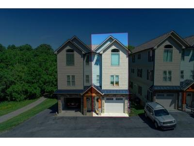 Kingsport TN Condo/Townhouse For Sale: $219,000