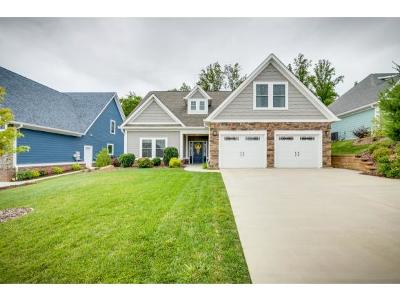 Kingsport Single Family Home For Sale: 258 Old Island Trail