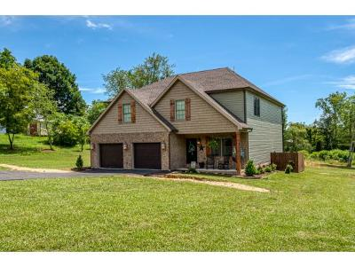 Jonesborough Single Family Home For Sale: 369 Old Embreeville Rd