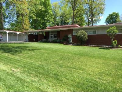 Greeneville TN Single Family Home For Sale: $135,000