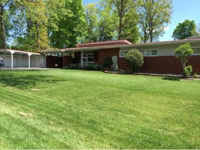 Greeneville Single Family Home For Sale: 65 Cherokee Blvd.